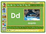ABC mouse game: D is for Dolphin
