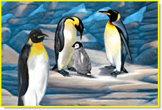 Visit the Penguins in the ABCmouse.com Zoo