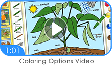 ABC mouse coloring options video